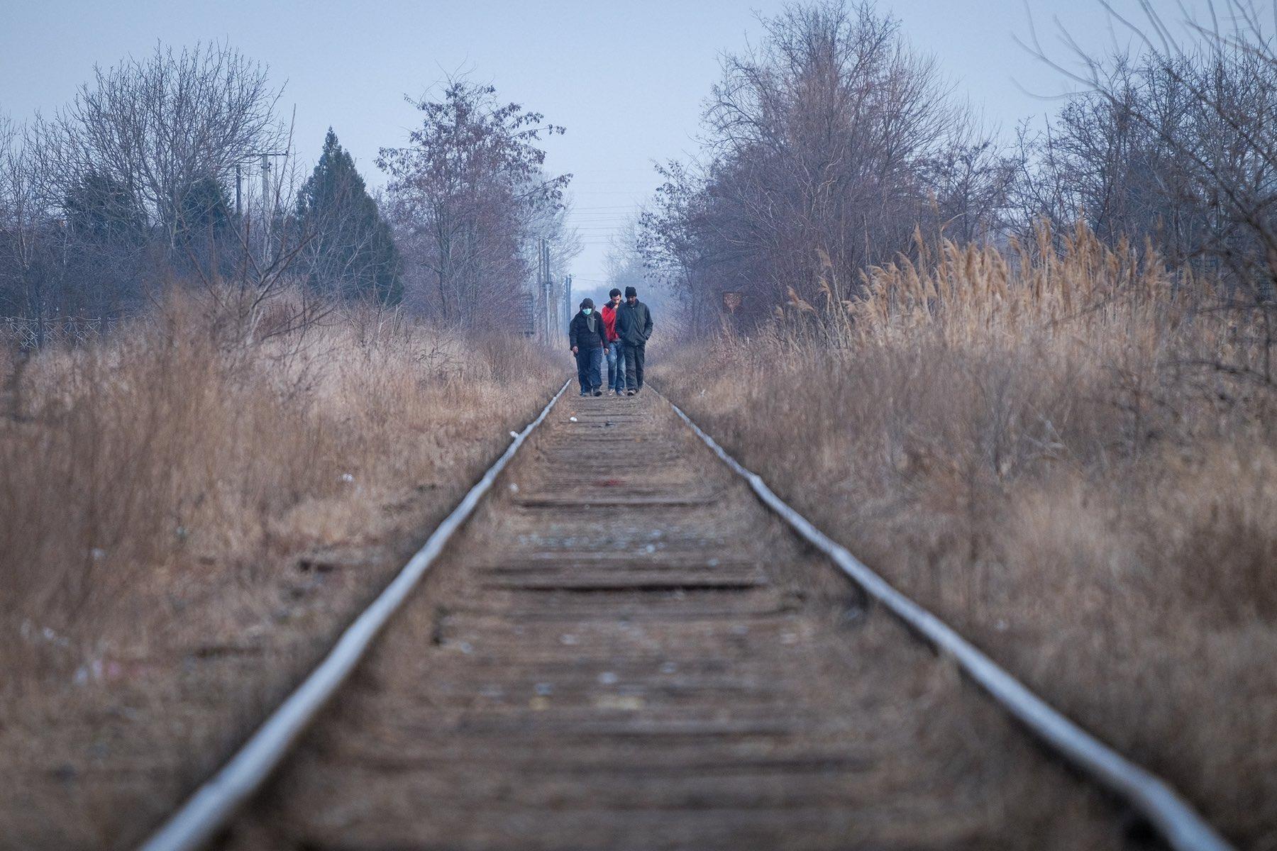 Subotica, refugees, forest, Oxfam